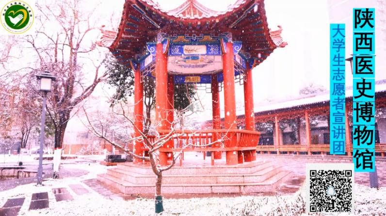 陕西医史博物馆—宣讲团风采
