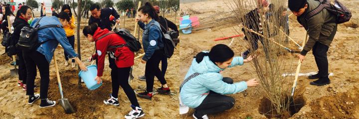 """我校组织少数民族学生""""拥抱阳光种植希望""""义务植树活动"""