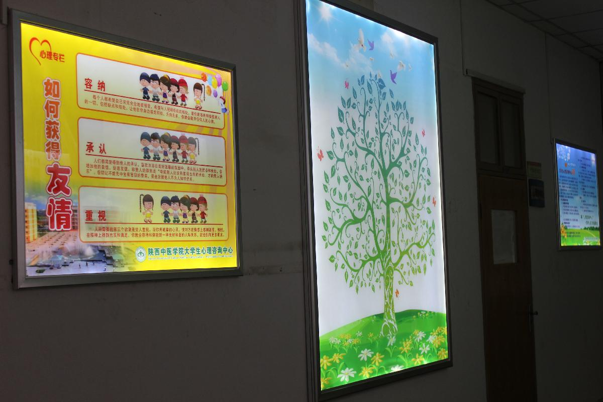 大学生心理咨询中心宣传展板旧貌换新颜